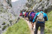 farpo-del-norte-senderismo-picos-de-europa